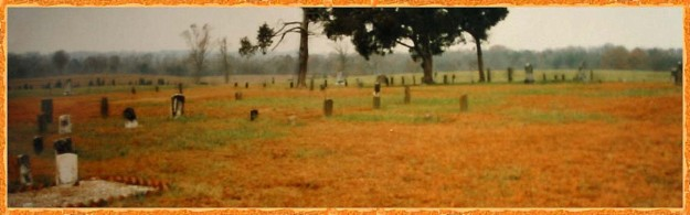 The Edmond L. Davis cemetery is located on a hilltop just east of the bridge where Olive Branch road crosses Gourdvine Creek in Union county NC.