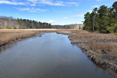 queen's creek 132