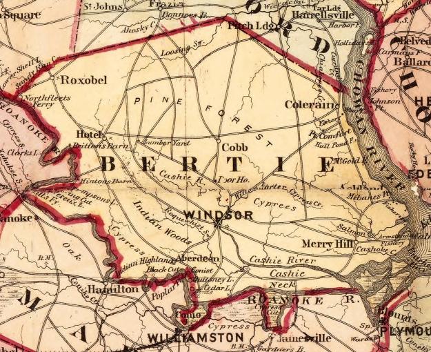bertie 1872